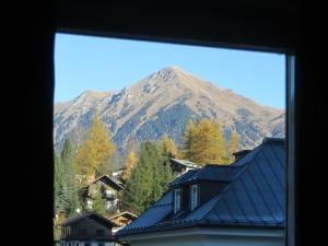 Haus Erika, Bed & Breakfast  Bad Gastein - big - 21
