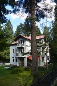 Villa Elena, Holiday homes  Borovets - big - 16