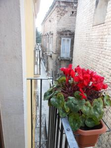 Palazzo Antica Via Appia, Bed and Breakfasts  Bitonto - big - 19