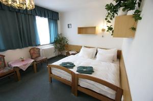Hotel Star 4,5