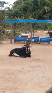 Mokorro Game Ranch and Lodge, Lodge  Chingola - big - 11