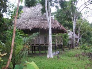Abundancia Amazon Eco Lodge, Kunyhók  Santa Teresa - big - 1