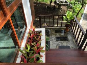 Ocean View Mini-Villa, Holiday homes  Wok Tum - big - 7