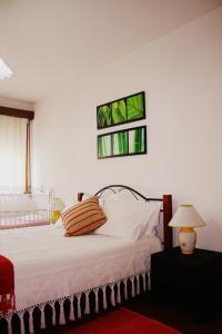 Flat Accommodation in Braga(Braga)