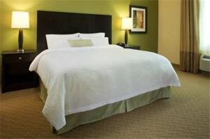 Hampton Inn & Suites Shreveport/Bossier City at Airline Drive, Hotely  Bossier City - big - 4