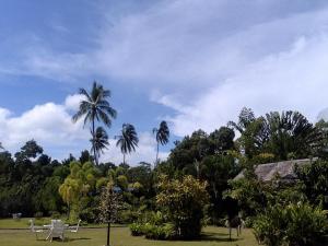 Ocean Garden Langkawi, Case vacanze  Kuah - big - 28