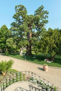 Cortona Resort & Spa - Villa Aurea, Hotels  Cortona - big - 57