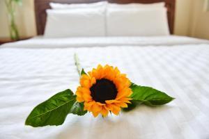 Oc Tien Sa Hotel, Hotel  Da Nang - big - 1