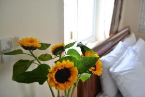Oc Tien Sa Hotel, Hotel  Da Nang - big - 30