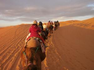 Camel Trek Bivouac, Zelt-Lodges  Merzouga - big - 8