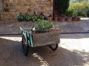 Agriturismo Borgo Muratori, Bauernhöfe  Diano Marina - big - 52
