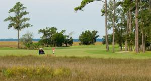The King and Prince Beach & Golf Resort, Üdülőközpontok  Saint Simons Island - big - 31
