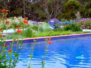 Lemonade Creek Cottages, Lodges  Lorne - big - 18