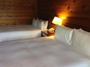 The Richforest Hotel- Sun Moon Lake, Üdülőtelepek  Jücsi - big - 21
