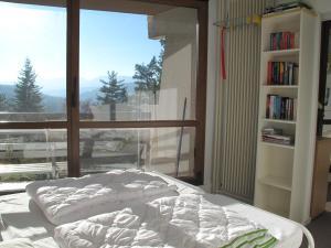 Le Balcon De Villard, Apartmány  Villard-de-Lans - big - 2