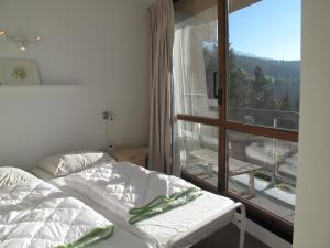 Le Balcon De Villard, Apartmány  Villard-de-Lans - big - 40