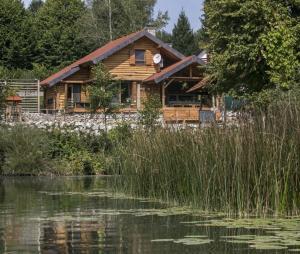 Villa riveRaj, Vily  Gornji Zvečaj - big - 6