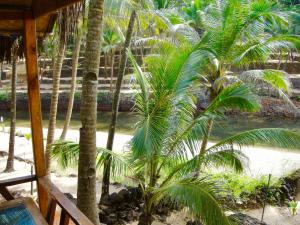 Blue Lagoon Resort Goa, Resort  Cola - big - 21