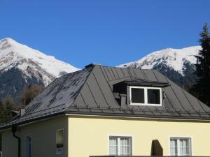 Haus Erika, Bed & Breakfast  Bad Gastein - big - 29