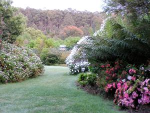 Lemonade Creek Cottages, Lodges  Lorne - big - 22