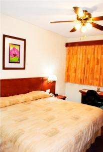 Hotel Marcella Clase Ejecutiva, Hotely  Morelia - big - 23