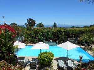 Roosboom Guest Apartments, Apartmány  Somerset West - big - 1
