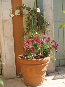 La Merci, Chambres d'hôtes, Bed & Breakfast  Montpellier - big - 67