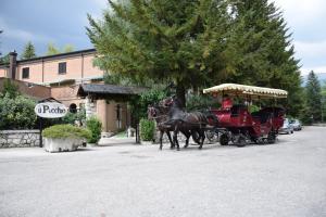 Albergo Il Picchio - AbcAlberghi.com