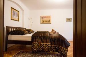 Apartment Ztracená 8, Apartmány  Olomouc - big - 5