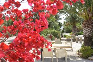 Medusa Beach Resort (3 of 53)