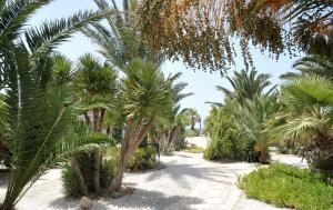 Medusa Beach Resort (14 of 53)