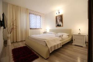 Apartament Maria, Ferienwohnungen  Galaţi - big - 15