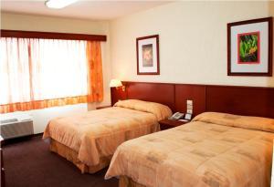 Hotel Marcella Clase Ejecutiva, Hotely  Morelia - big - 1