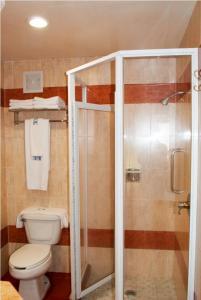 Hotel Marcella Clase Ejecutiva, Hotely  Morelia - big - 6