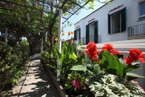 Hotel & Residence Matarese, Hotel  Ischia - big - 61