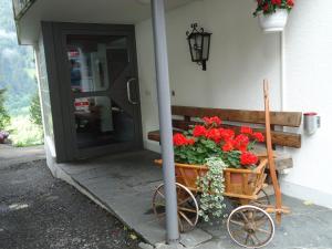 Tschuggen Apartment - No Kitchen, Апартаменты  Гриндельвальд - big - 13
