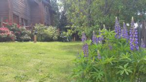 Sol Y Paz Cabañas, Lodges  San Carlos de Bariloche - big - 16