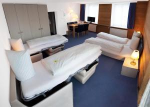 Hotel-Restaurant Bellevue, Hotely  Flims - big - 10