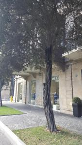 Apartment Neftchilar Prospect 5, Apartmány  Baku - big - 16