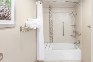 Deluxe Suite Accessible Tub