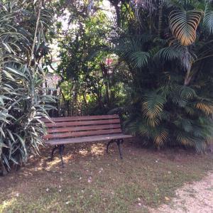 Hostel Chapada dos Veadeiros, Ostelli  Alto Paraíso de Goiás - big - 31