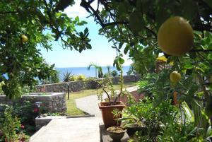 Cap Soleil, Ferienwohnungen  Saint-Leu - big - 95