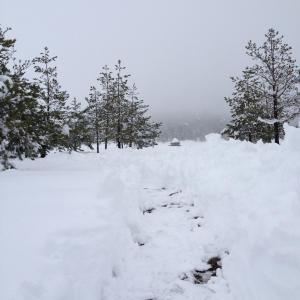 Previja Zlatibor Chalet, Horské chaty  Zlatibor - big - 62