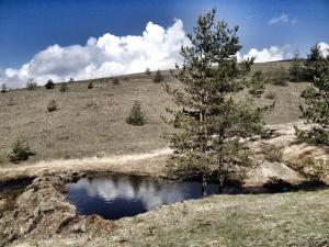 Previja Zlatibor Chalet, Horské chaty  Zlatibor - big - 65