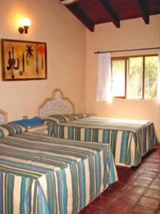 Hotel Carrizal Spa, Lodges  Jalcomulco - big - 4