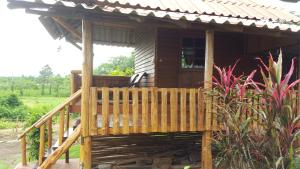 ChiangDao Country Retreat, Resorts  Chiang Dao - big - 42
