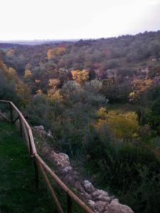 Centro de Naturaleza Cañada Verde, Farmházak  Hornachuelos - big - 42