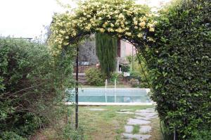 Casa da Quinta De S. Martinho, Guest houses  Vila Real - big - 72