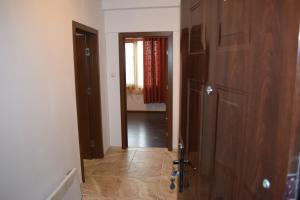 Apartment Angelina, Ferienwohnungen  Velingrad - big - 28