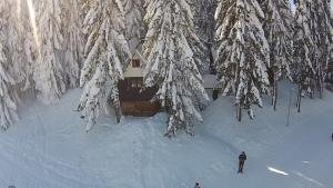 Apartments Sema, Apartmanok  Jahorina - big - 5